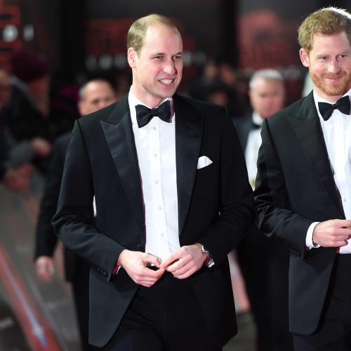 The Real Royal Drama Is Between Princes William & Harry