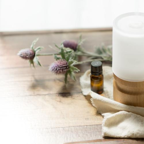 Nine Must Try Essential Oil Recipes For Your Diffuser