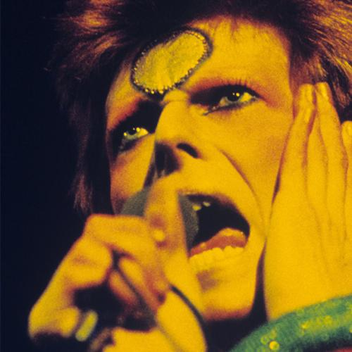 Bowie Live