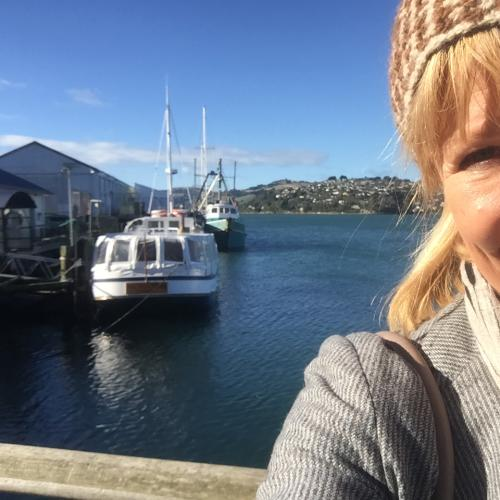 We Follow Our 4KQ Dunedin Reporter's Journey This Week