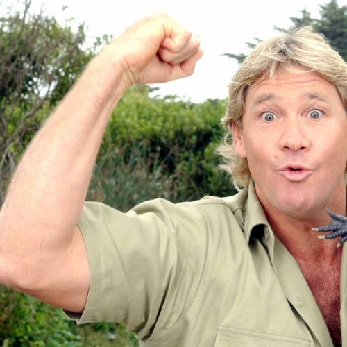 Internet Rips Peta A New One Over Their Steve Irwin Tweet