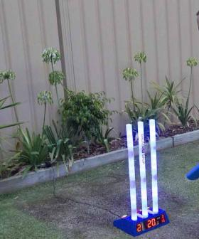 The Cricket Stumps That Keep Score, So You Don't Have To