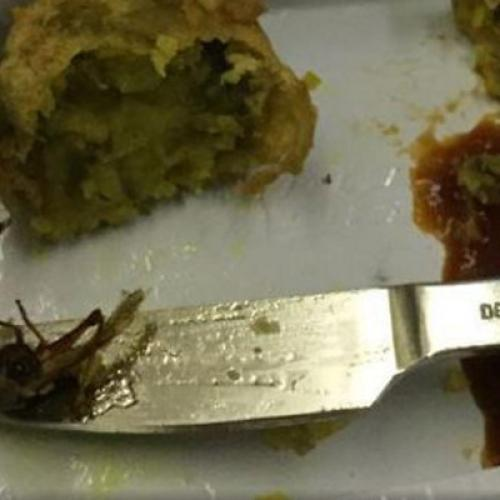 Horrified Passenger Makes Gruesome Discovery In Onboard Meal