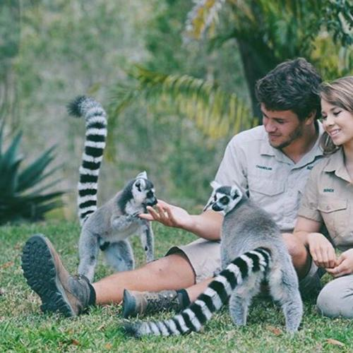 Bindi Irwin Says Goodbye To Boyfriend Chandler Powell
