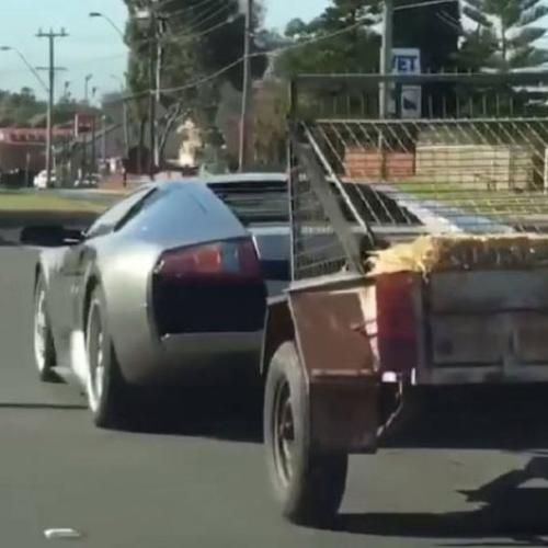 Sydney Man Tows Trailer With Goats Behind His Lamborghini