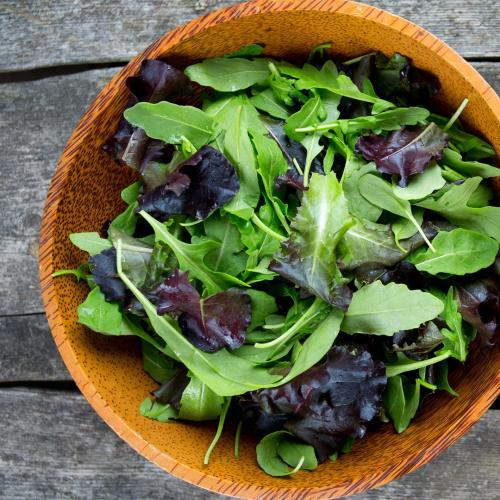 The Gross Reason Why You Should Never Eat Bagged Salad