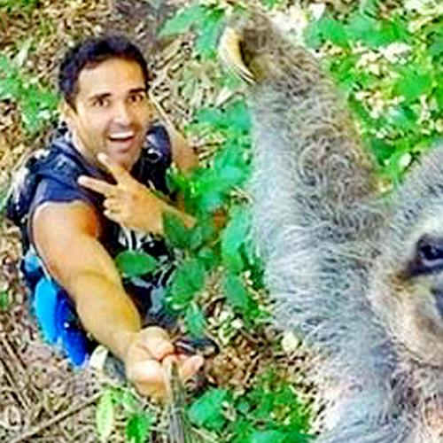 This Sloth Selfie Has Caused the Internet to Lose its Mind