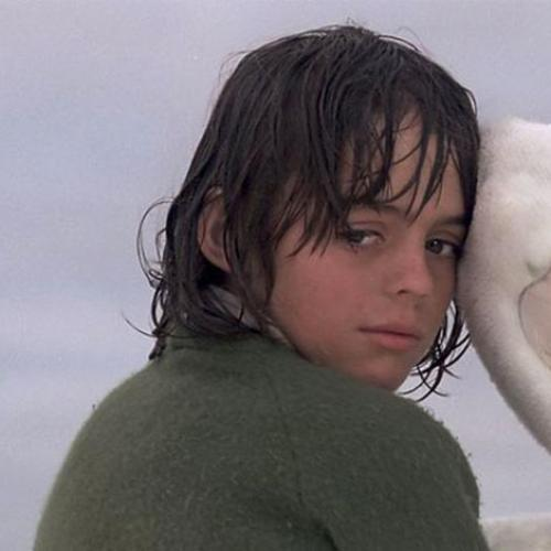 Aussie Classic Storm Boy Is Being Rebooted