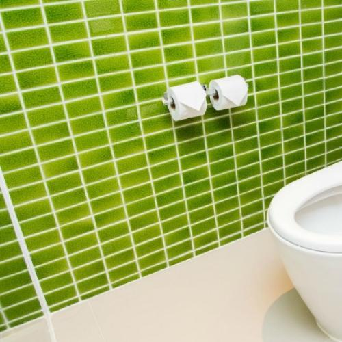 Guess What Everyday Thing Has More Bacteria Than A Toilet?