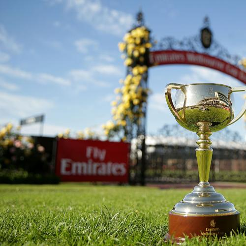 Melbourne Cup Trophy Stolen From Houdini Cafe In Diggers Rest