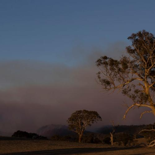 Queensland Braces For Severe Fire Threat