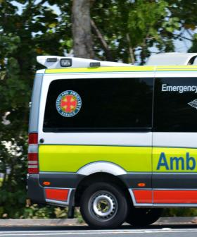 Gold Coast Surfer Killed in Traumatic Shark Attack
