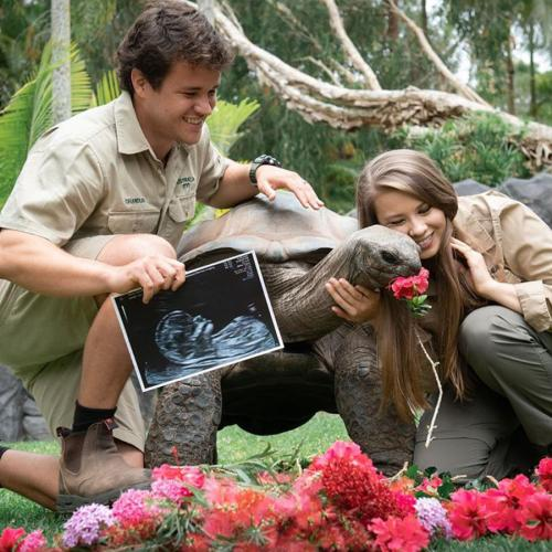 """""""You Are Our World"""": Bindi Irwin And Chandler Powell Reveal They Are Expecting A Girl!"""