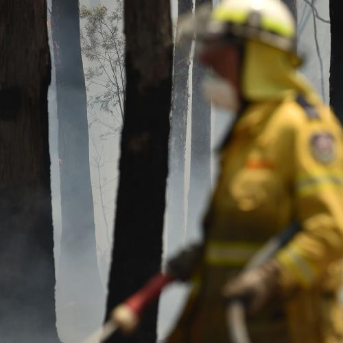 One Year On From The Devastating Bushfires, We're Reminded What Can Be Done With Aussie Spirit