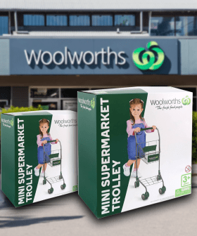 Woolies Has Released A $30 Mini Supermarket Trolley, And Shoppers Love It!
